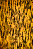 Un fond de brun jaune Photos libres de droits