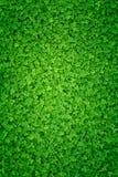 Un fondo irlandés verde claro de la cuchilla fotografía de archivo