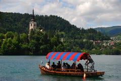 Un forte rematore maschio della barca gode di di remare una barca per i turisti sul lago sanguinato con la copertura molto colour fotografia stock