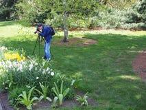 Un fotógrafo del tiempo de primavera Imagen de archivo libre de regalías
