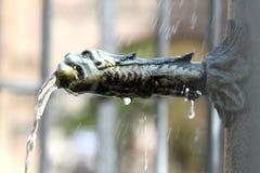 Un frammento della fontana Fotografia Stock