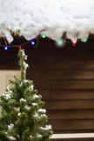 Un frammento di un albero di Natale Immagini Stock Libere da Diritti