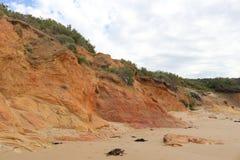 Un fronte della scogliera a bassa marea Fotografia Stock Libera da Diritti