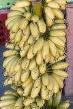 Un fruit de plan rapproché de banane Photographie stock