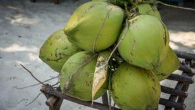 Un fruit vert de noix de coco pour boire le paquet sur le sable de plage et la table en bois étirent photo stock