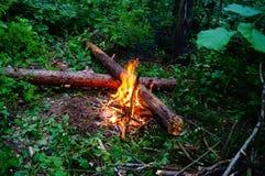 Un fuego en el bosque Fotografía de archivo libre de regalías