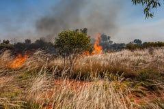 Un fuego en el interior australiano imagen de archivo