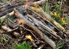 Un fuego encendido en el bosque fotografía de archivo