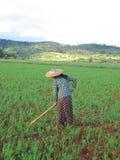 Un funcionamiento de la mujer del granjero Imagenes de archivo
