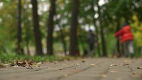 Un funzionamento di due adolescenti con un motorino e un penny imbarcano in loro mani Si muovono lungo il percorso nel parco Anco archivi video