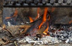 Un fuoco del barbecue Immagine Stock