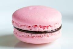 Un gâteau français de macaron de rose de désert Photographie stock libre de droits
