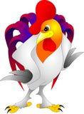Un gallo enojado del color blanco Imágenes de archivo libres de regalías