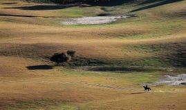 Un ganadero del caballo en pradera del otoño imagenes de archivo