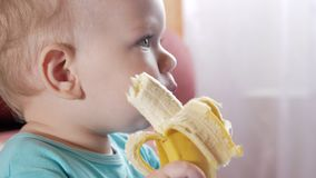 Un garçon attirant 2 années mange une banane Se repose à la table à la maison Bandes dessinées soigneusement de observation à la  banque de vidéos