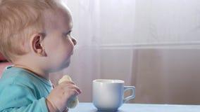 Un garçon attirant 2 années mange une banane Se repose à la table à la maison Bandes dessinées soigneusement de observation à la  clips vidéos