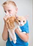 Un garçon avec l'allergie de chat Photographie stock libre de droits