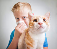 Un garçon avec l'allergie de chat Photo stock