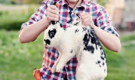 Un garçon dans l'usage de cowboy tenant le lapin la nuque dans la ferme Photos libres de droits