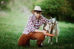 Un garçon dans la chèvre de alimentation d'usage de cowboy avec la carotte dans la ferme Photo stock