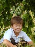 Un garçon dans une hutte Photo libre de droits