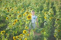 Un garçon de sourire avec un panier des tournesols Garçon de sourire avec le tournesol Un garçon de sourire mignon dans un domain Photo stock