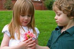 Un garçon donnant des fleurs Photographie stock