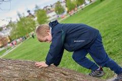 Un garçon grimpe à l'arbre images libres de droits