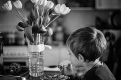 Un garçon mangeant le petit déjeuner un portrait noir et blanc image libre de droits