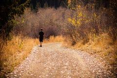 Un garçon marche sur une route dans la forêt photographie stock