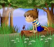 Un garçon observant un insecte illustration de vecteur