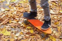 Un garçon patinant en parc d'automne Photographie stock