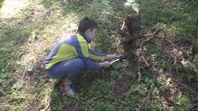 Un garçon rassemble des champignons banque de vidéos
