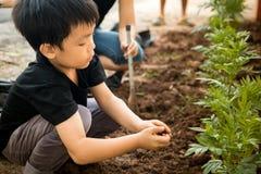 Un garçon s'asseyant pour planter des arbres dans le trou avec ses mains Image libre de droits