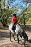 Un garçon s'asseyent sur un cheval Photos libres de droits