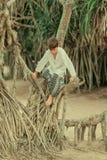 Un garçon sur un arbre dans le pantalon afghani Images stock
