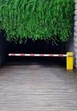 Un garaje ocultado en hojas verdes Fotos de archivo