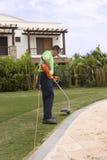 Un gardner avec un wacker d'herbe. image libre de droits