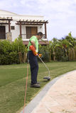Un gardner con un wacker de la mala hierba. Imagen de archivo libre de regalías