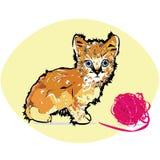 Un gatito Imagenes de archivo