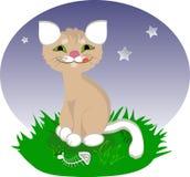 Un gato feliz de la historieta Fotos de archivo