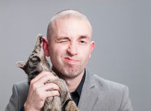 Un gato sobre fondo gris rasguña al hombre de negocios Imagenes de archivo