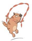 Un gato y una cuerda que salta Imagen de archivo libre de regalías