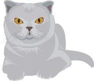 Un gatto grigio illustrazione vettoriale