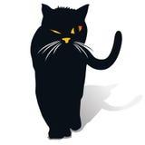 Un gatto nero Immagini Stock Libere da Diritti