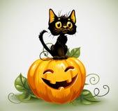 Un gatto nero sveglio su una zucca di Halloween. Immagine Stock