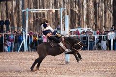 Un gaucho que muestra sus habilidades del rodeo Imagen de archivo