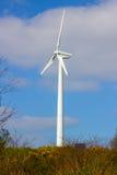 Un generatore eolico locale con i suoi 3 supporti delle pale gira al minimo su un pomeriggio luminoso della molla in Conlig in Ir fotografia stock libera da diritti