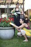 Un giardinaggio delle due donne Immagine Stock Libera da Diritti
