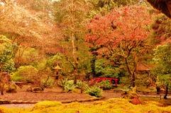 Un giardino abbastanza giapponese fotografia stock